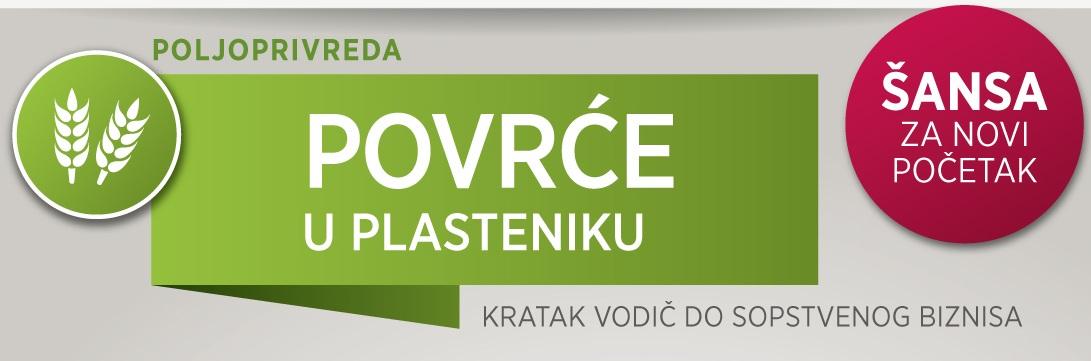 Povrce-u-plasteniku